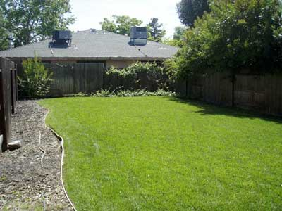 Lush green grass and fresh landscaping in the backyard provide a nice place to relax or visit with other residents.